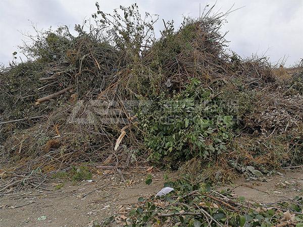 园林绿化树枝处理方案,推荐大型园林树枝破碎机厂家